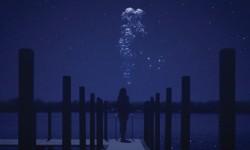 AFI Fest Review: 'The Midnight Swim'