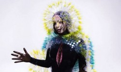 Surprise! Bjork's New Album 'Vulnicura' Is Out Now