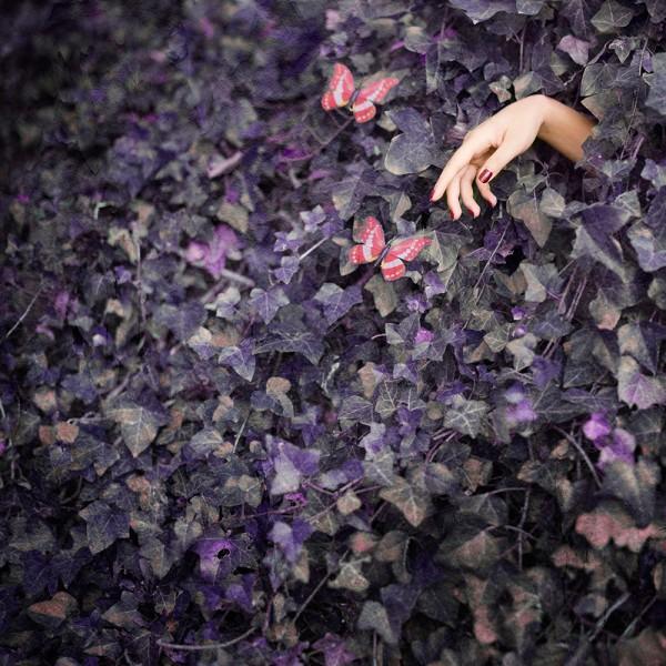 Amelie Berton - reaching the light
