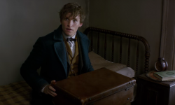'Fantastic Beasts And Where To Find Them' Already Looks Magical