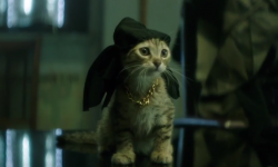 The New Poster & Trailer For 'Keanu' Will Kill You