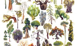'Fifty Trees' By Sarah Webb