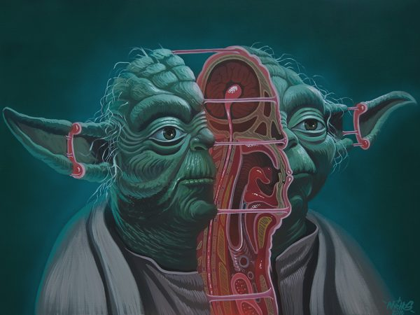 Nychos_Dissection-of-Yoda-1