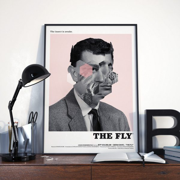 the_fly_steven_key_1