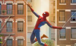 'Spider-Man' By Andy Fairhurst