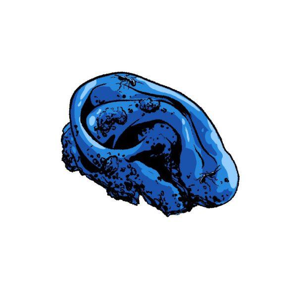 Tobin Blue Velvet Ear sticker