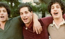 Film Review: 'Three Identical Strangers'