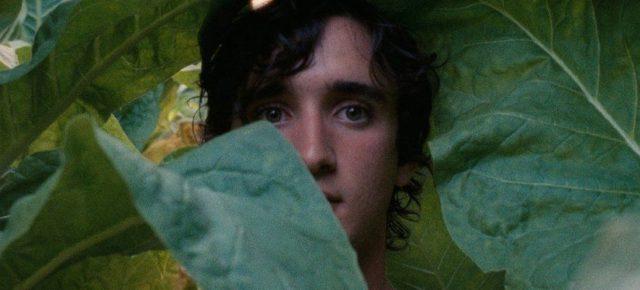 Film Review: 'Happy As Lazzaro'
