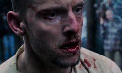 Film Review: 'Donnybrook'